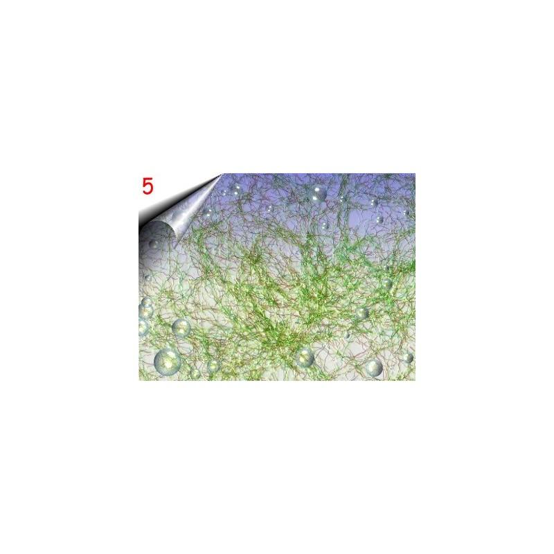 Laser Lace ~ Nagelnetz Lime Nr.5